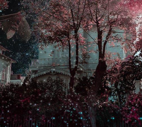 Безкоштовне стокове фото на тему «Adobe Photoshop, hausing, небесно-блакитний, світлячок»