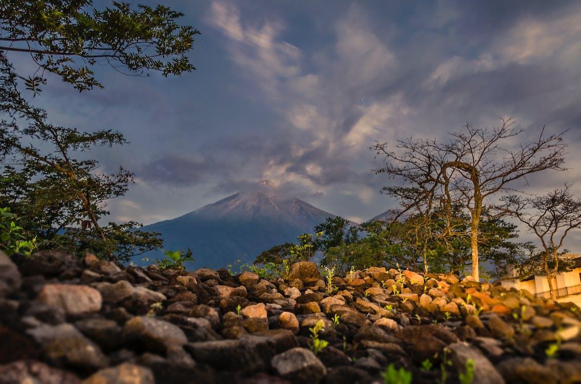 과테말라, 구름 낀 하늘, 나무