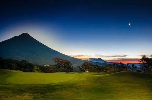 Foto profissional grátis de árvore, árvores, céu azul, golfe