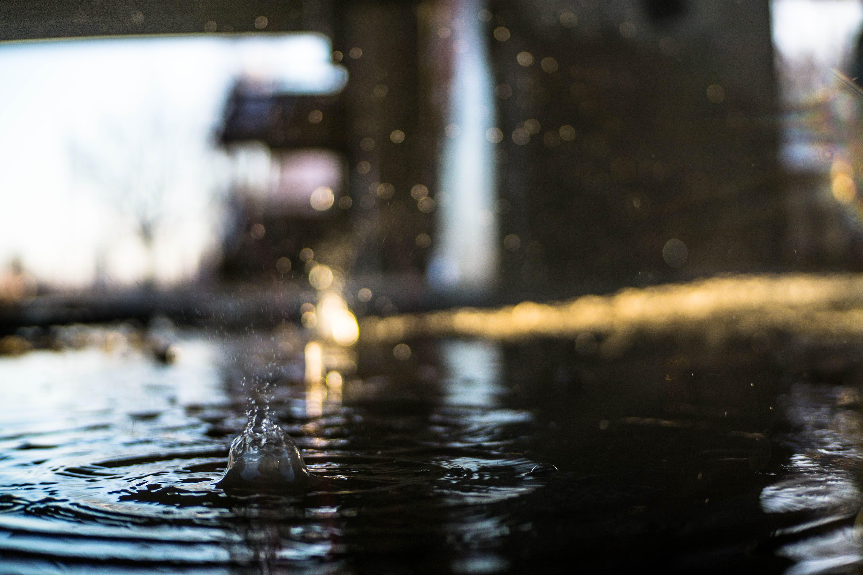 Imagine de stoc gratuită din apă, baltă, picătură de apă, ud