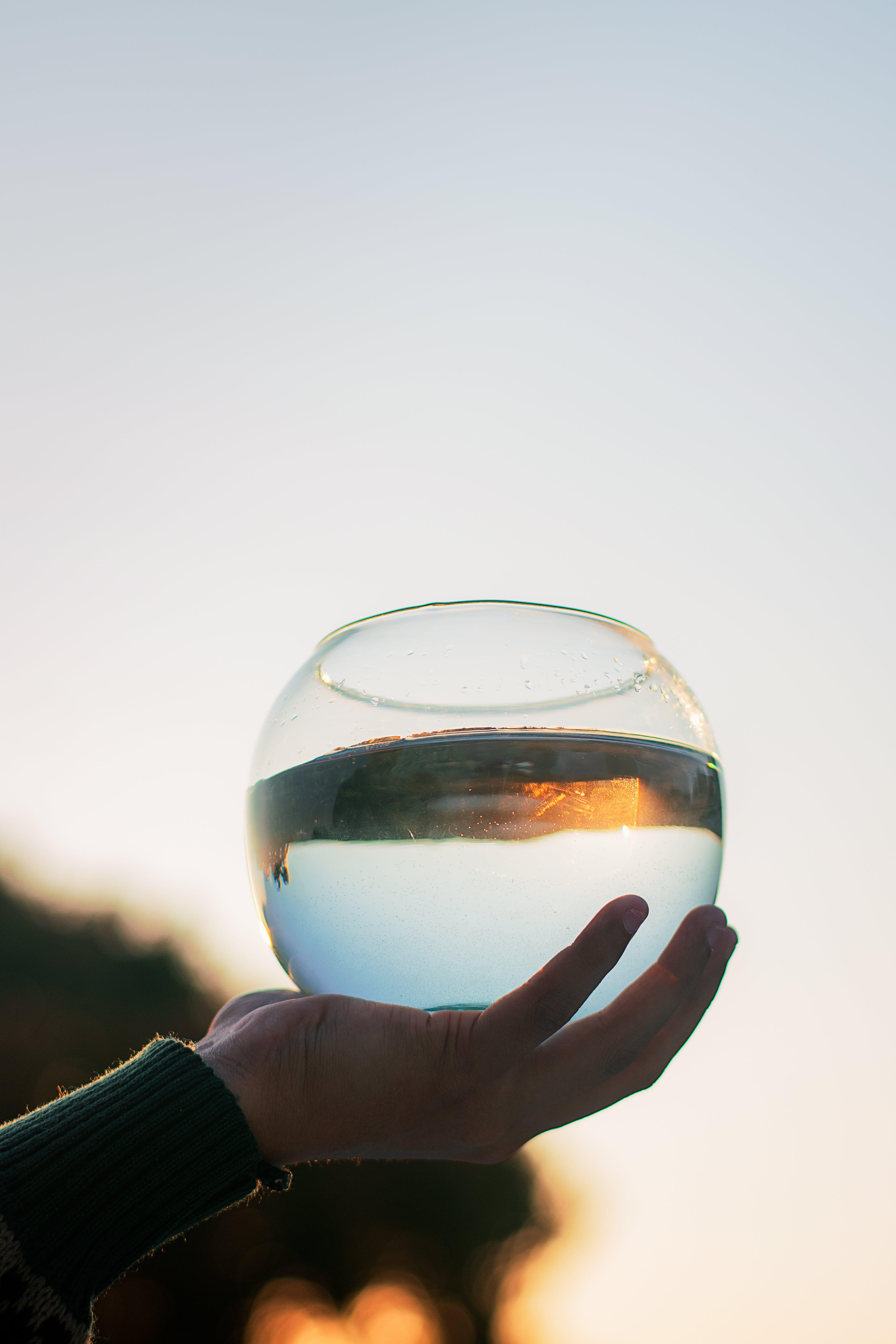 Darmowe zdjęcie z galerii z akwiarium, makro, ręka, szklanka