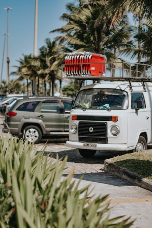 교통체계, 나무, 도시, 도시의의 무료 스톡 사진