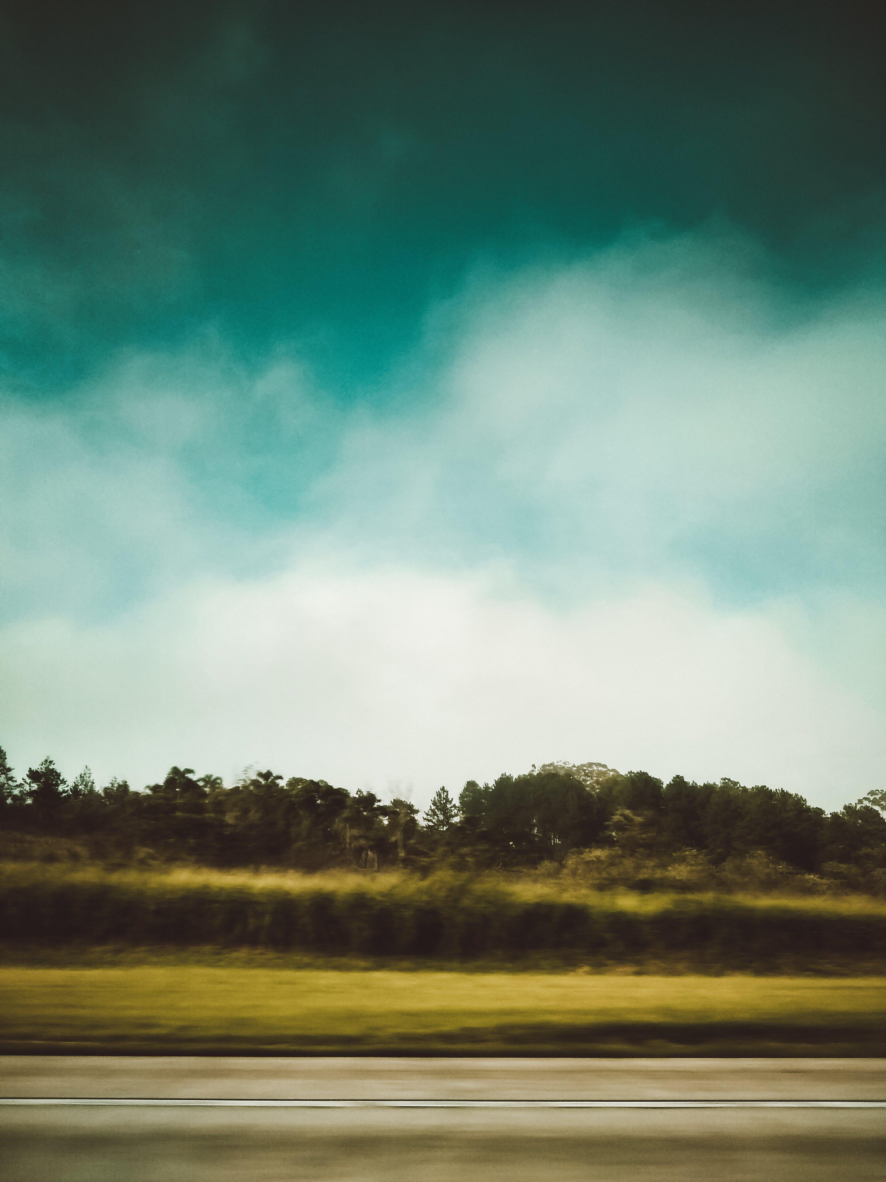 Gratis lagerfoto af dagslys, græs, himmel, landskab