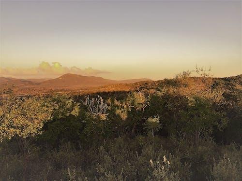 Immagine gratuita di baia di guantanamo, cuba, gtmo, mattina presto