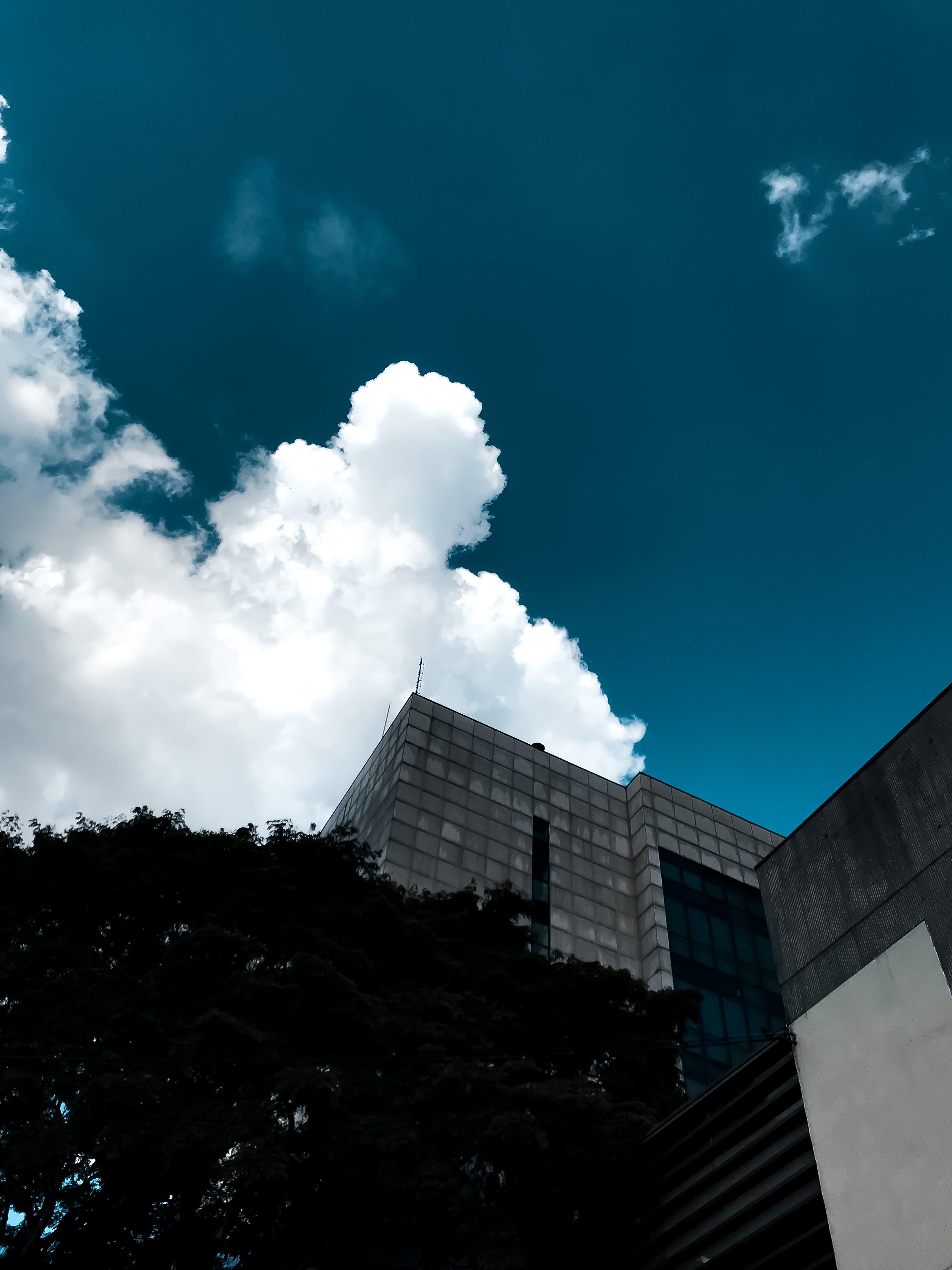 Kostenloses Stock Foto zu architektur, aufnahme von unten, außen, bäume