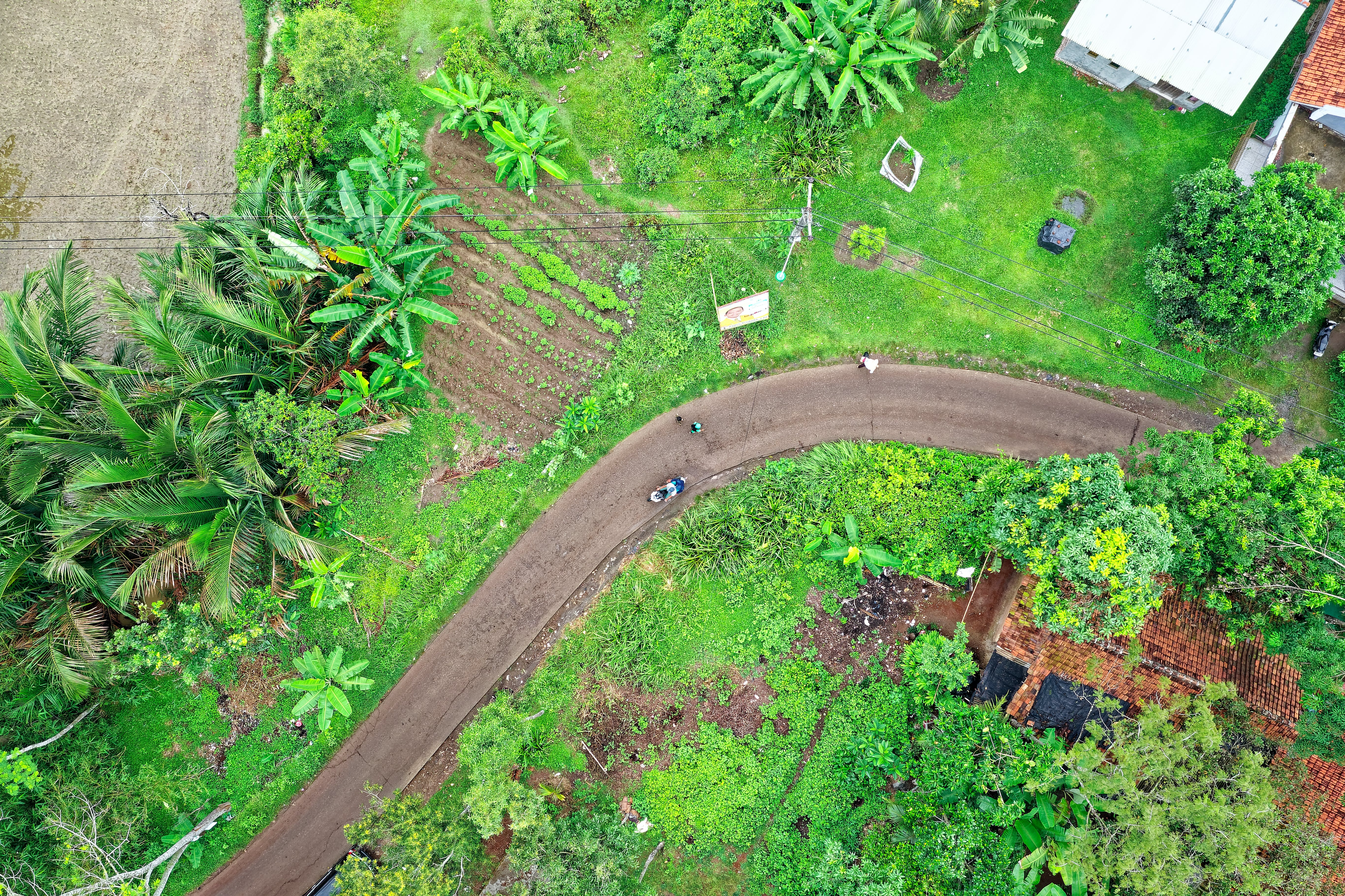 Top View Photo of Road