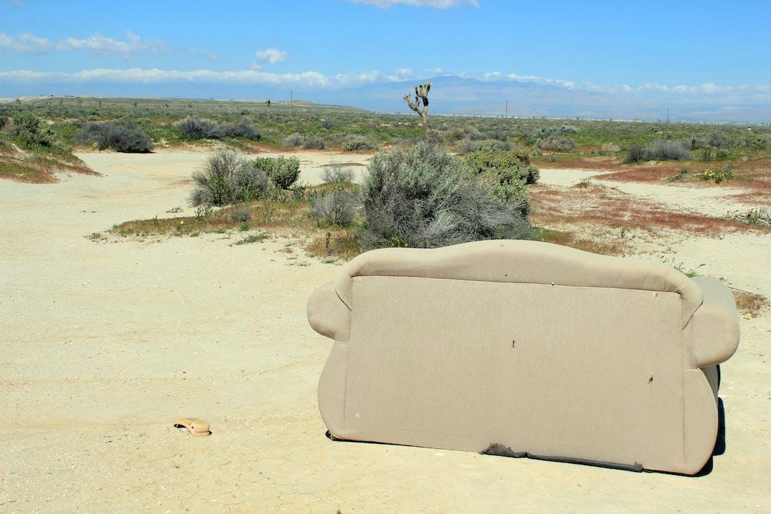αντιλόπη κοιλάδα, έρημος, καναπές