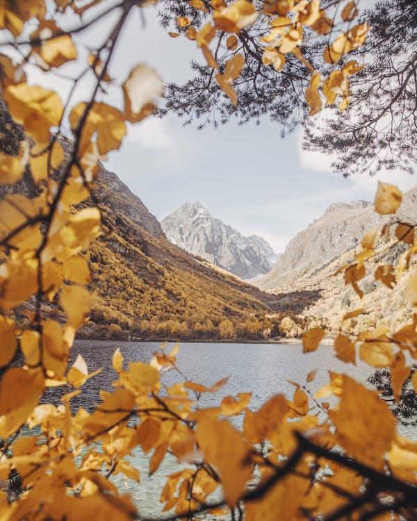 barvy, denní světlo, hory