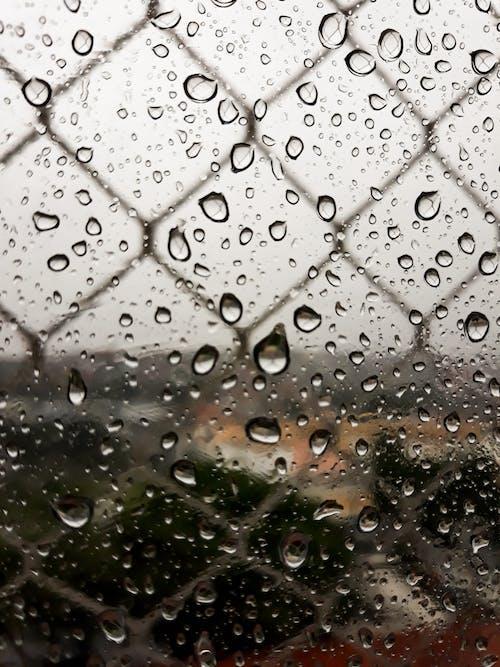 Бесплатное стоковое фото с аквамарин, дождь, капать, капля воды