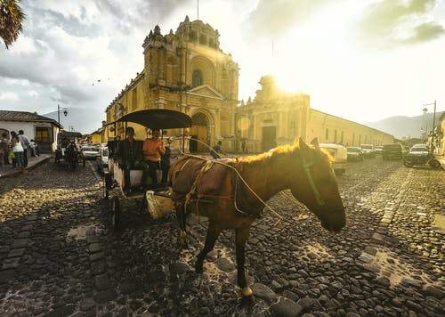 Foto profissional grátis de antígua, antigua guatemala, capela, cavalo