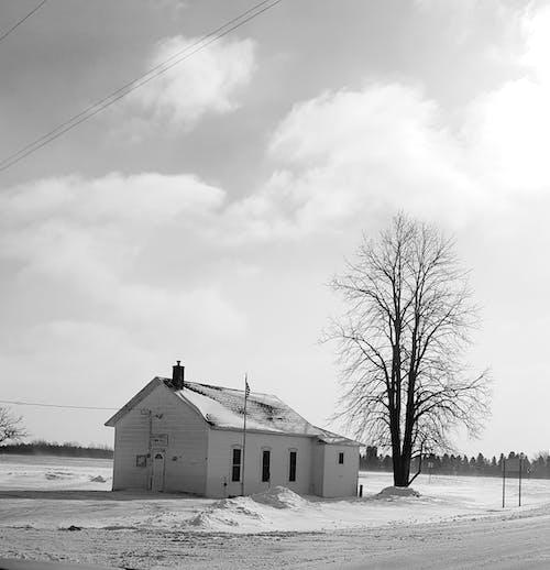 Foto d'estoc gratuïta de #country #alone #tree #snow #winter #road #flag