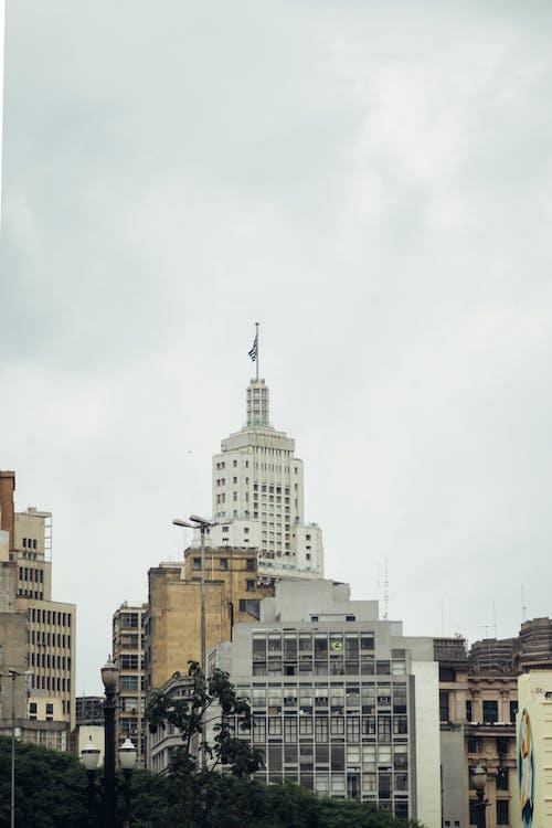 Free stock photo of brazil, canon, city, photography
