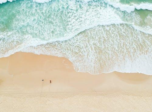 Fotobanka sbezplatnými fotkami na tému krajina, krajina pri mori, krásny, kývať