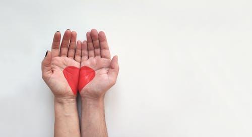Základová fotografie zdarma na téma červená, den sv. Valentýna, design, láska