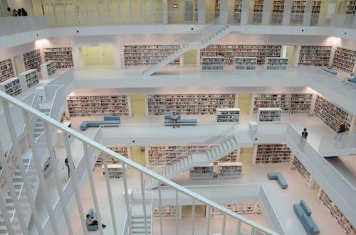 건물, 건축, 내부, 도서관의 무료 스톡 사진