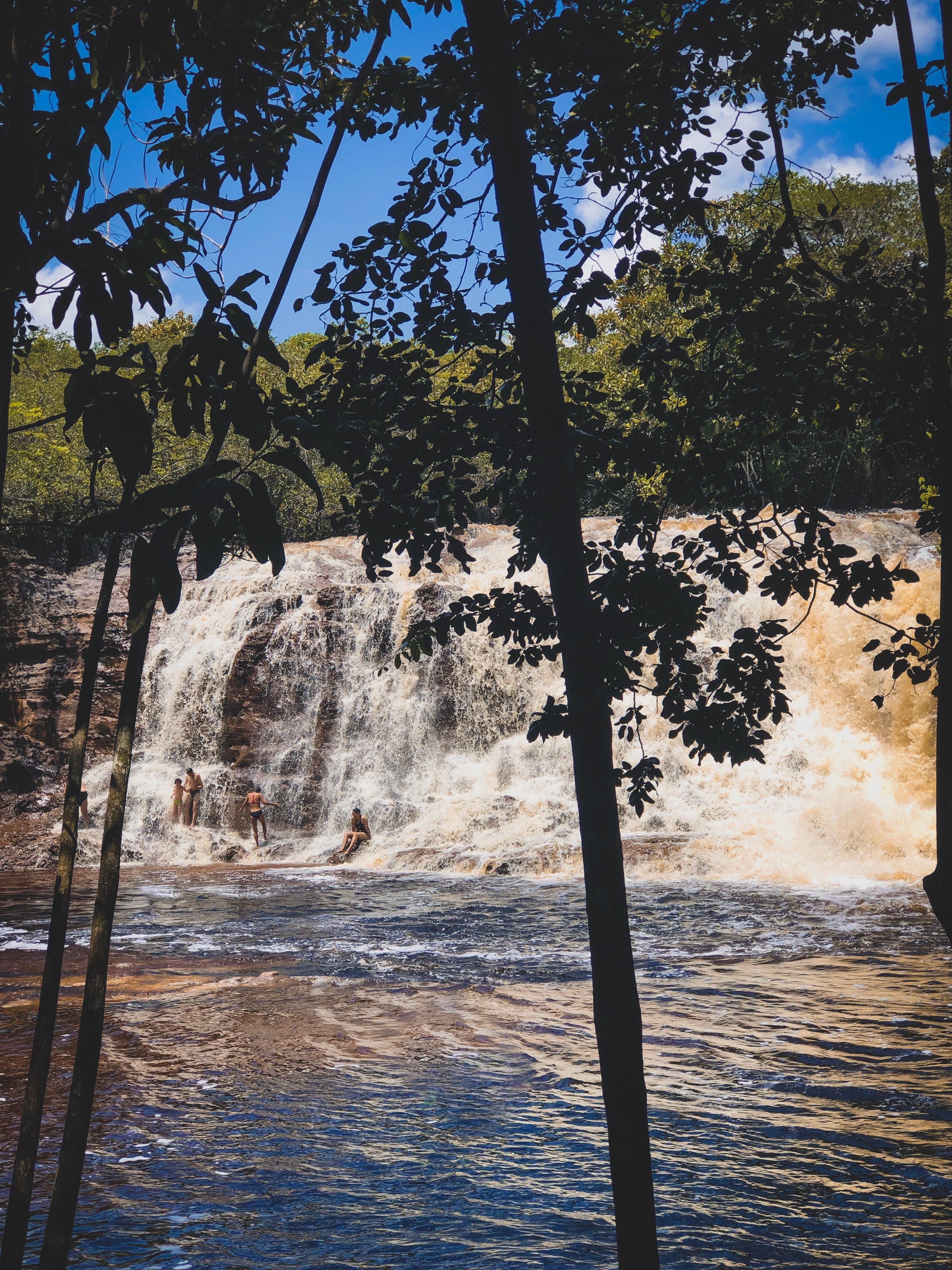 Gratis lagerfoto af #shotoniphone #nature #waterfall #brazil