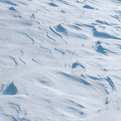 Photos gratuites de neige, paysage d'hiver