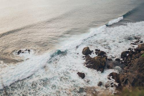 คลังภาพถ่ายฟรี ของ กลางวัน, คลื่น, ชายทะเล, ชายฝั่งหิน