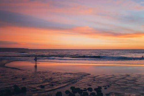 Безкоштовне стокове фото на тему «безтурботний, берег, берегова лінія, відпустка»