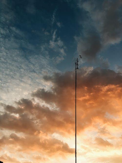 Foto d'estoc gratuïta de acer, alt, capvespre, cel