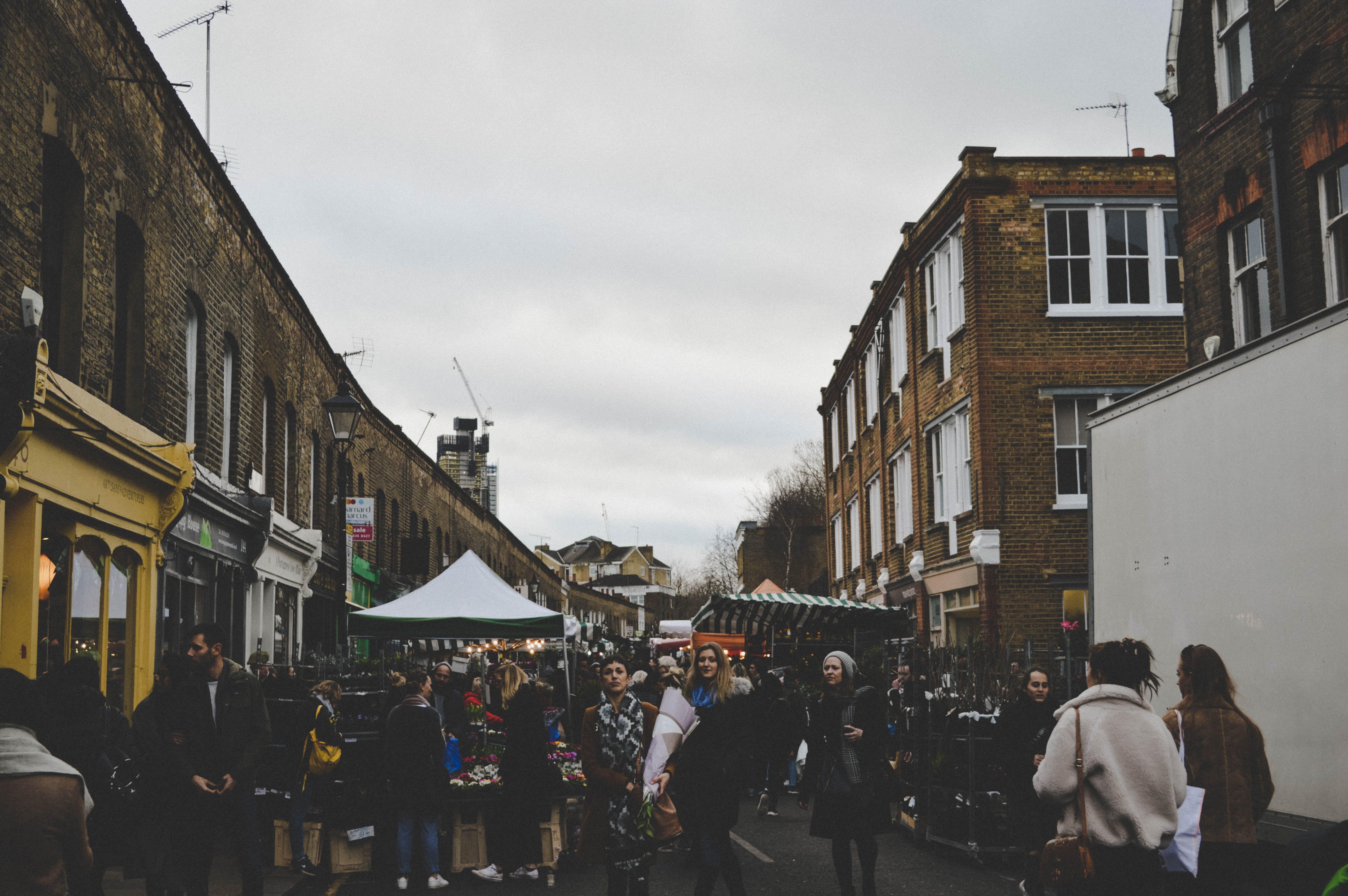 Free stock photo of capture, london, moment, park