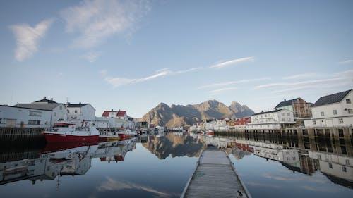 Бесплатное стоковое фото с вода, гавань, голубое небо, город