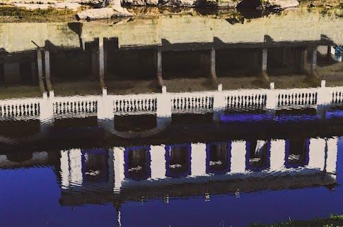 Immagine gratuita di capturar, curitiba, lugar, parque