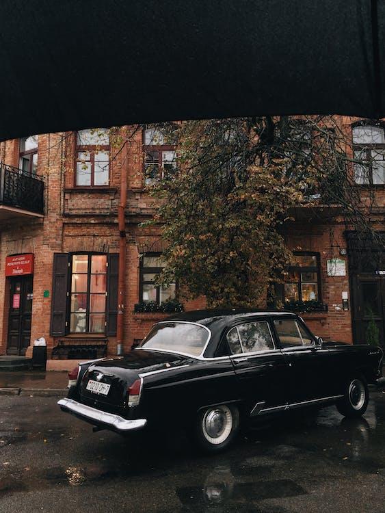 Black Sedan Parked Under Tree