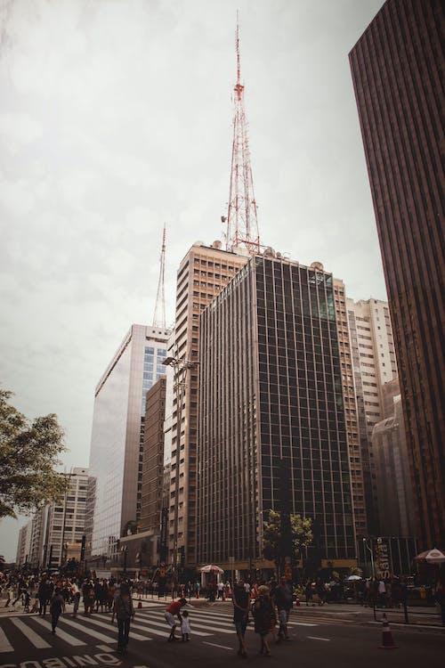 bầu trời, các tòa nhà, cao