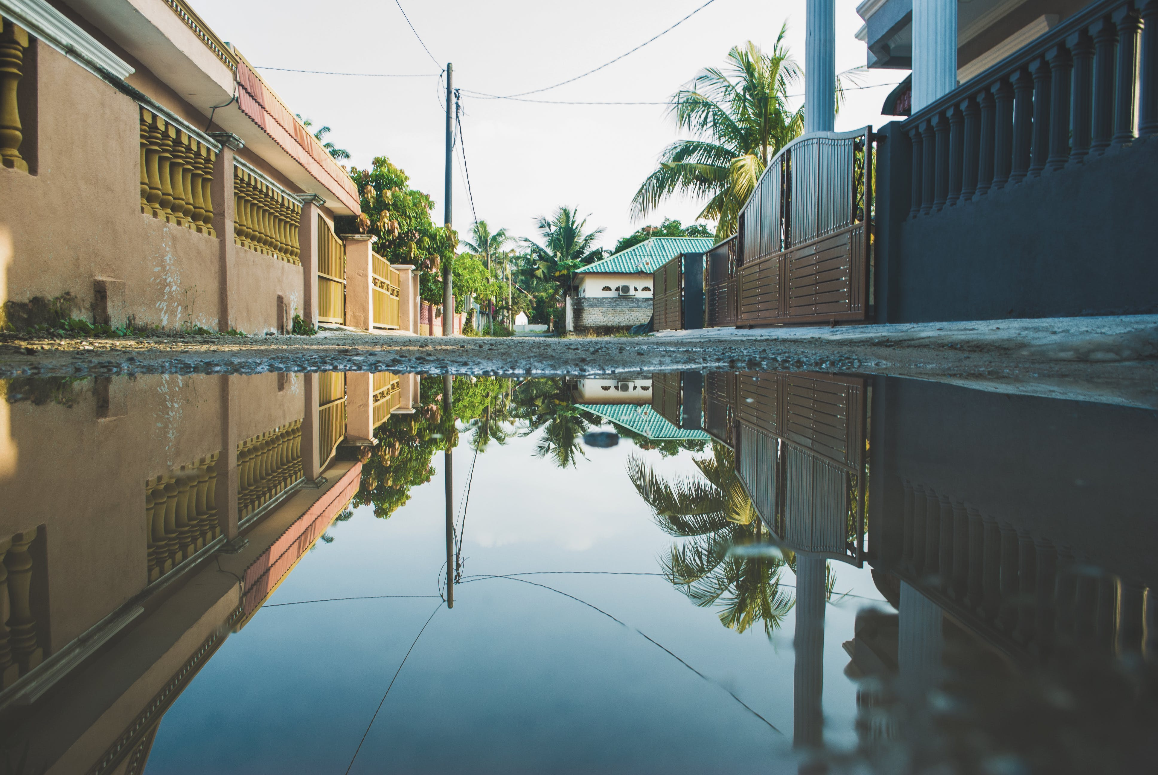 Reflection of Street in Puddle