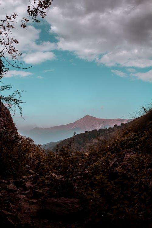 Бесплатное стоковое фото с вид на природу, гора, красота в природе, природа