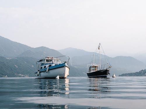 Immagine gratuita di acqua, baia, barche, cielo