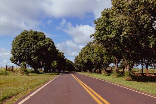 Δωρεάν στοκ φωτογραφιών με άκρη του δρόμου, αυτοκινητόδρομος