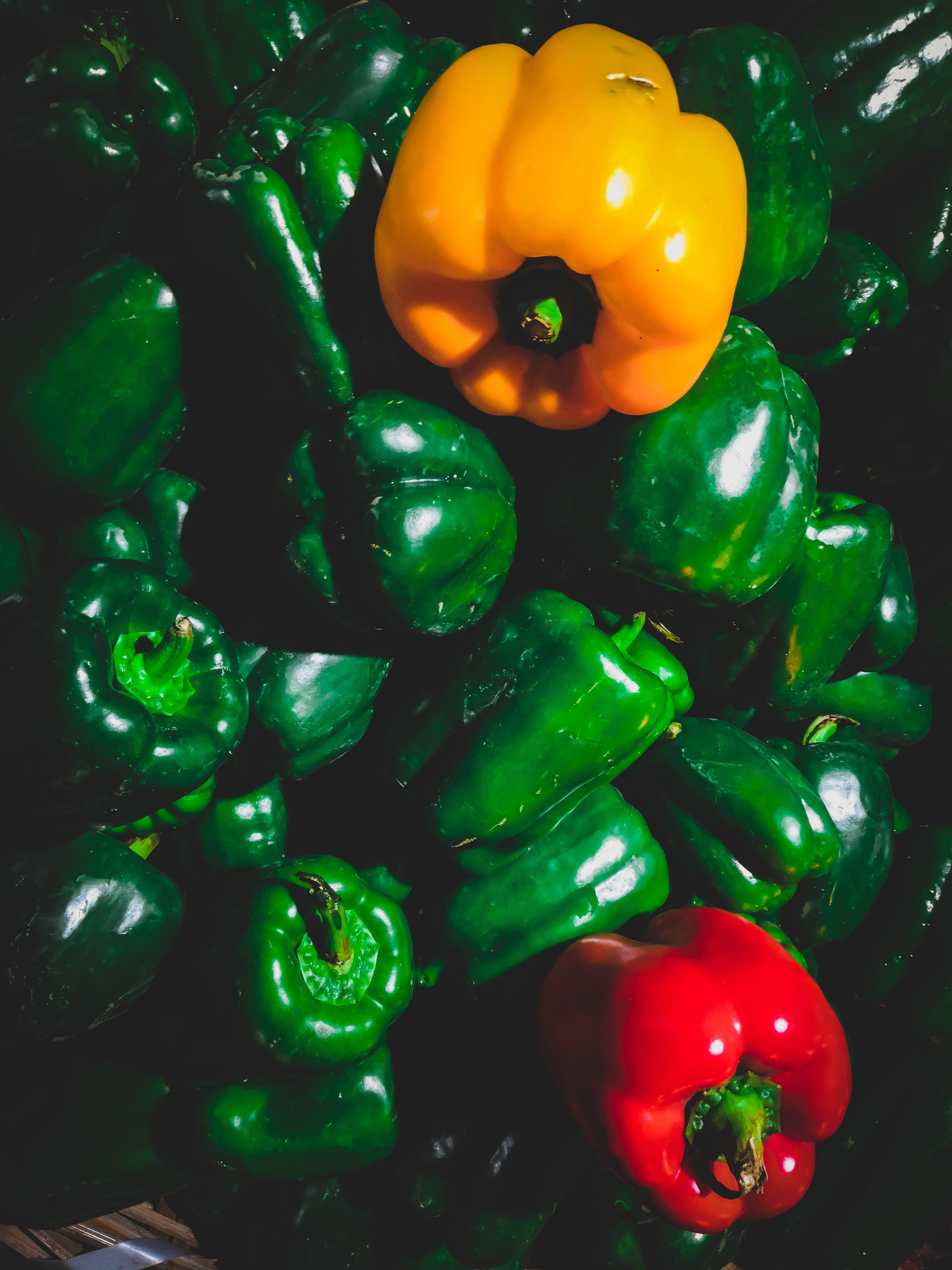 Green, Yellow, and Red Bell Pepper Lot