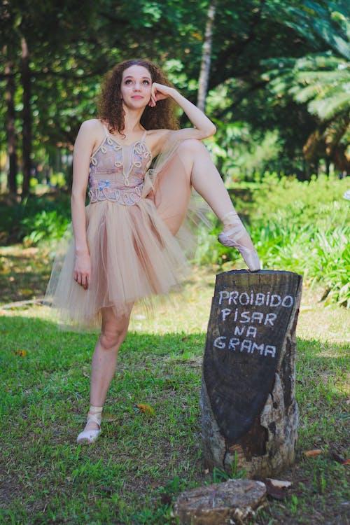 Kostenloses Stock Foto zu attraktiv, ballettschuhe, balletttänzer, baum-protokoll