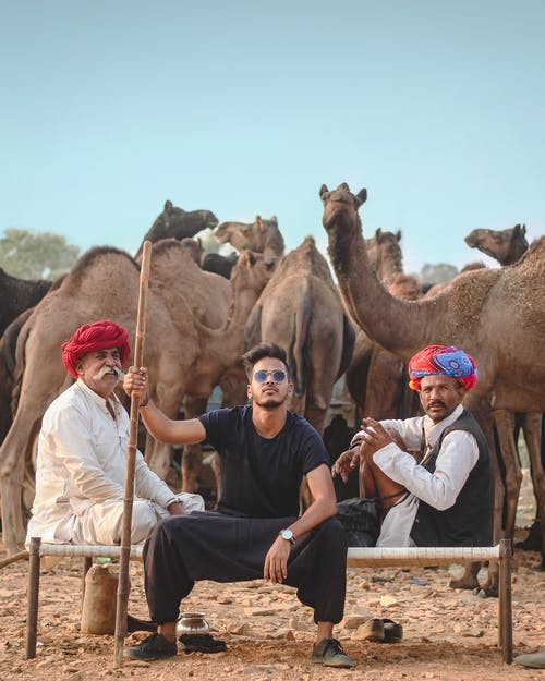 Three Men Sitting With Herd of Camels Behind