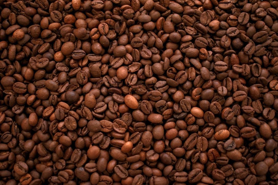 Ingyenes stockfotó aratás, bab, cappuccino témában