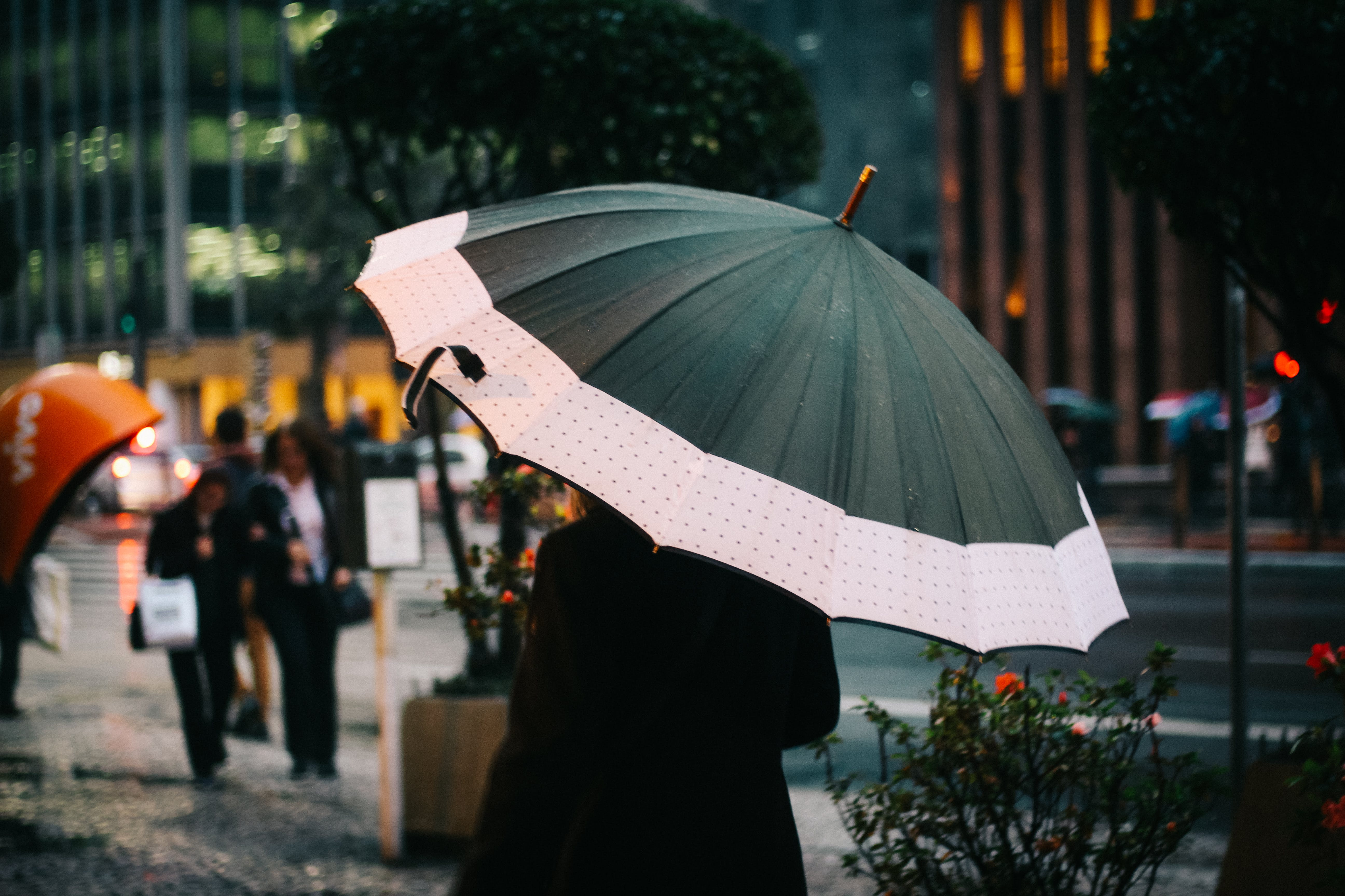 Selective Focus Photography Of Woman Walking On Street While Holding Umbrella