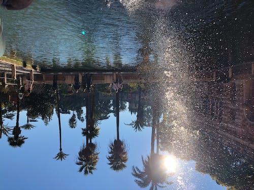 Photos gratuites de à l'envers, bulles d'eau