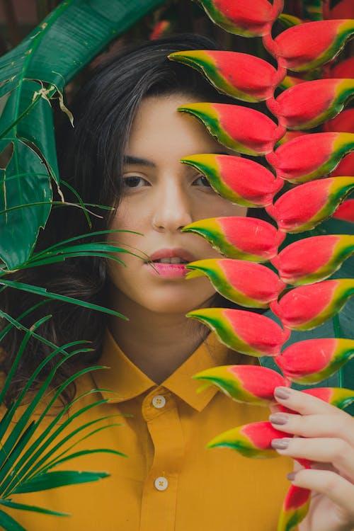 bitki, çiçek, güze, güzel içeren Ücretsiz stok fotoğraf