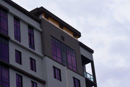 #building #purple #light içeren Ücretsiz stok fotoğraf