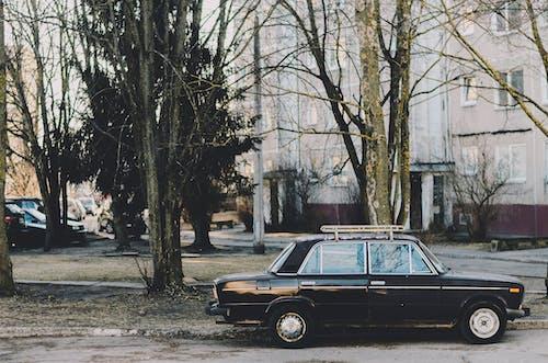 Parked Black Sedan
