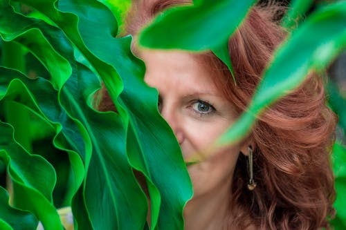 Woman Hiding on Green-leafed Plant
