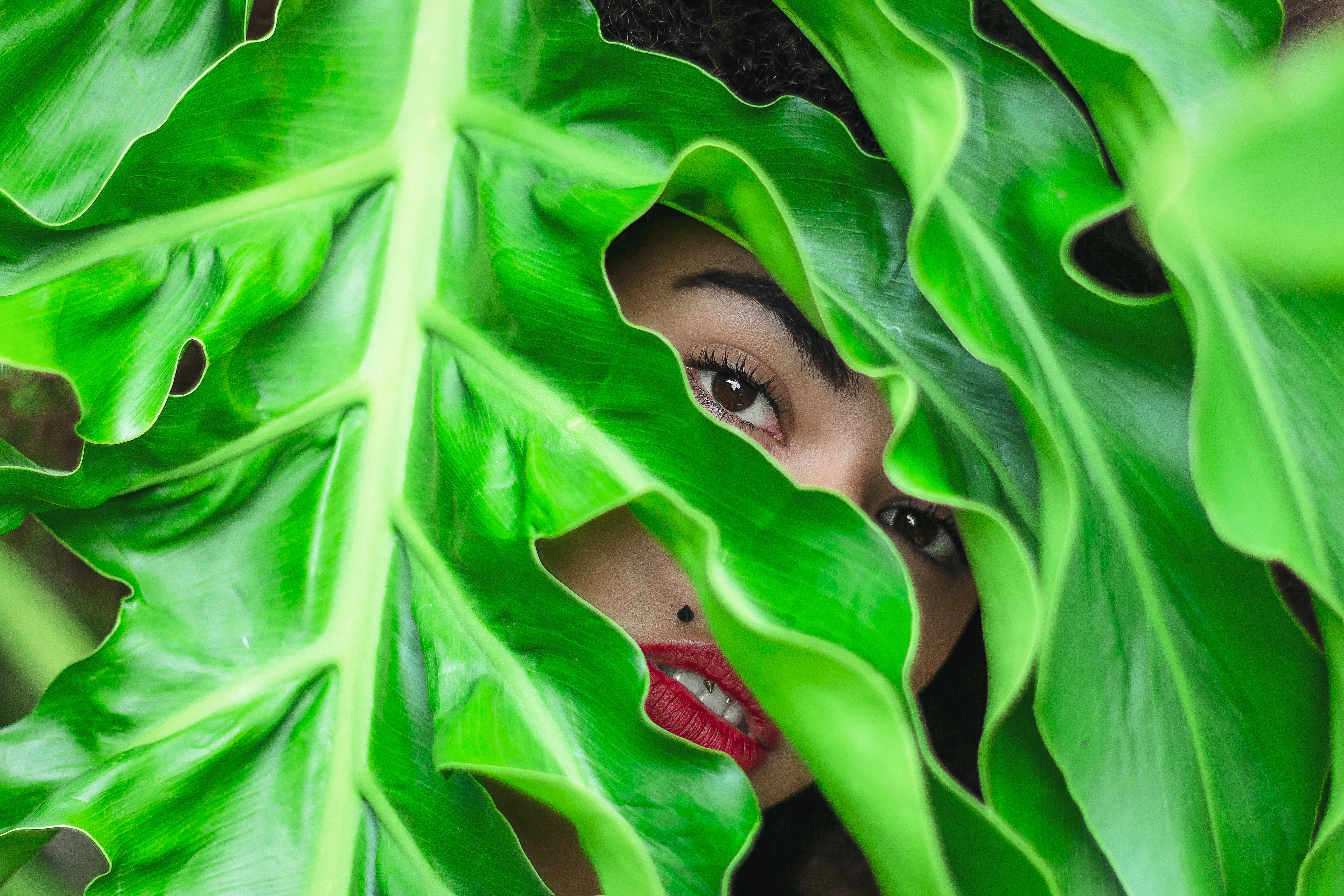 Person Behind Green Leaves