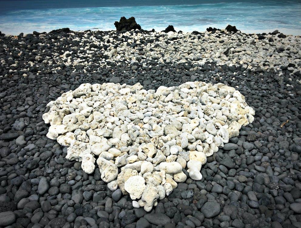 al aire libre, amor, corazón