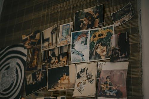 다채로운, 독창성, 미술 전시회, 벽의 무료 스톡 사진