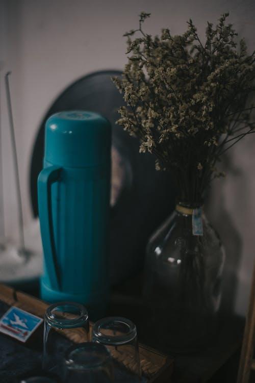 Бесплатное стоковое фото с бутылка, в помещении, ваза, дерево
