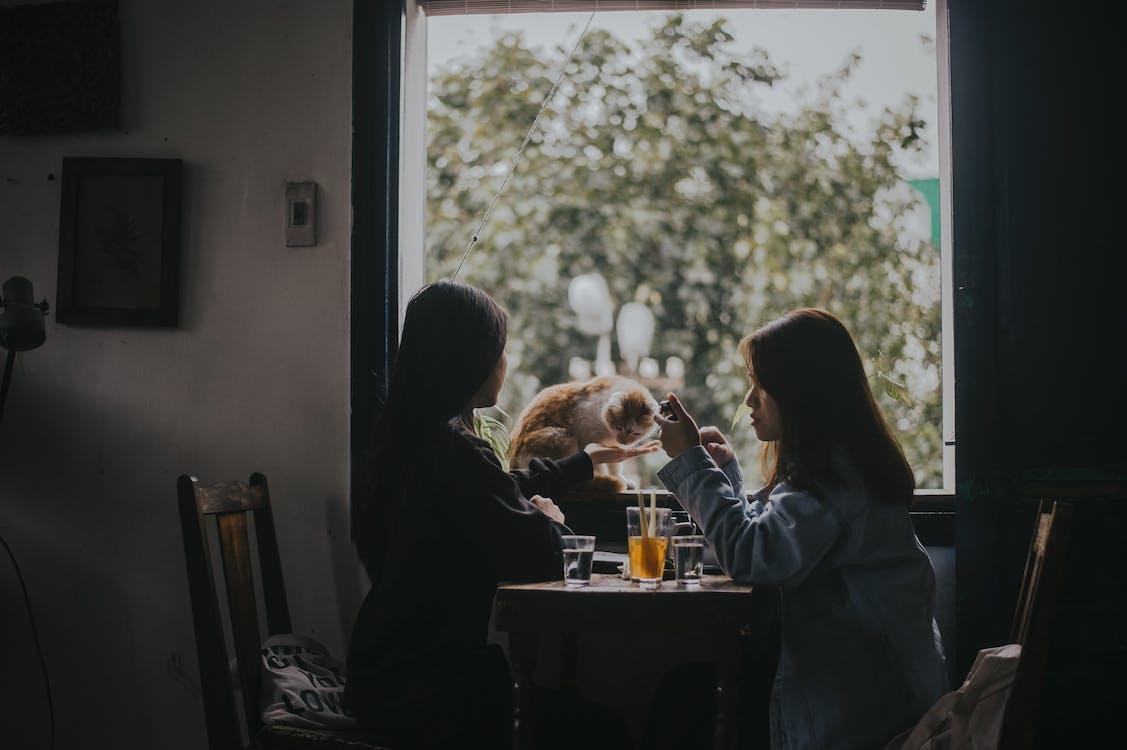 Women Sitting at Table Near Window