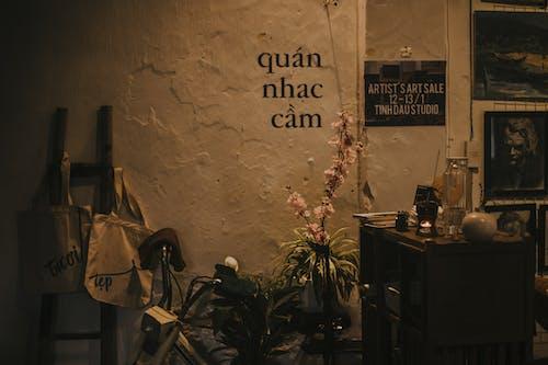 Ingyenes stockfotó #vietnami, Hanoi, kávé, nikon témában