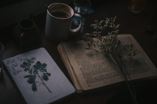 Foto d'estoc gratuïta de aprendre, aprenent, beguda, cafè